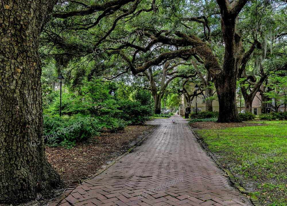 Historic Chatham Square in Savannah