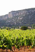 Chateau de Lascaux, Vacquieres village. Pic St Loup. Languedoc. Les Contreforts des Cevennes. Tourtourelle area. France. Europe. Vineyard.