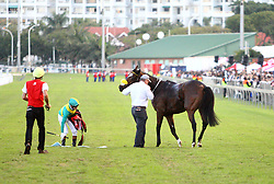 Durban 07-07-18 :Unfortunately one of the horses could not copmlete the 2018 Vodacom July as its broke it leg towards the finishing line.<br /> PICTURE BONGANI MBATHA AFRICAN NEWS AGENCY (AMA)