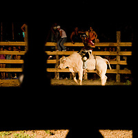 A ranchero rides a bull during a rodeo in the beachside town of Dominical, Costa Rica on April 26, 2009.  (Photo/William Byrne Drumm)