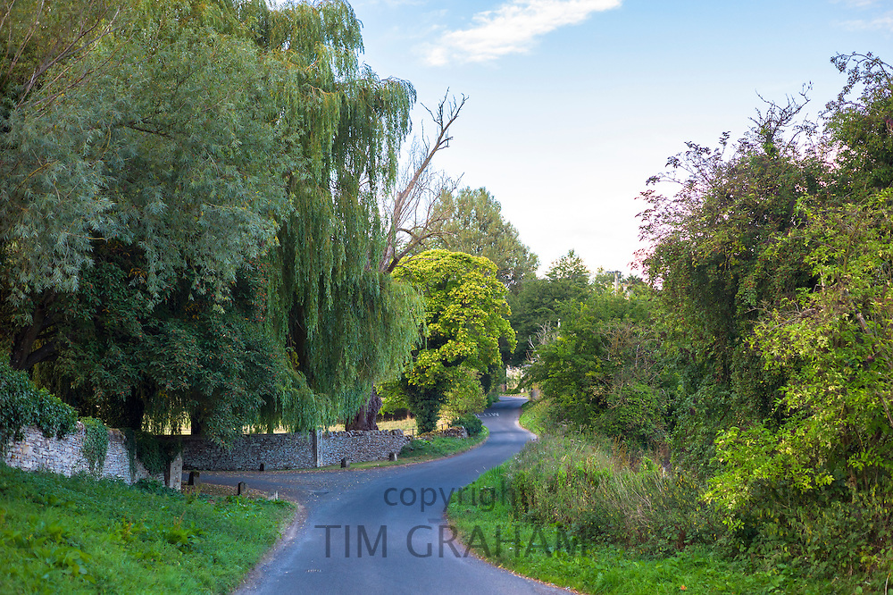 Quiet, deserted winding country lane at Swinbrook in The Cotswolds, Oxfordshire, UK
