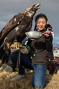 Kazakh eagle huntress feeding her eagle<br /> Mongolia's largest ethnic minority<br /> in Altai Mountains<br /> Western Mongolia
