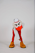 2017 Miami Hurricanes - Sebastian the Ibis Studio Shoot