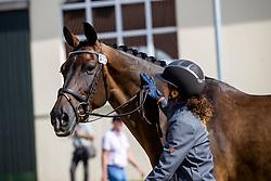 Ferrer-Salat Beatriz, ESP, Elegance<br /> European Championship Dressage Hagen 2021<br /> © Hippo Foto - Dirk Caremans<br />  06/09/2021