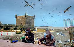 Fishermen gutting fish at thre harbour in Essaouira, Morocco<br /> <br /> (c) Andrew Wilson | Edinburgh Elite media