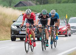 25.06.2017, Grein an der Donau, AUT, Rad Strassen Staatsmeisterschaft Elite Herren, 2017, Grein an der Donau, Oberösterreich im Bild v.l.Michael Gogl (AUT, Trek - Segafredo), Lukas Pöstlberger (AUT, Bora - Hansgrohe), Markus Eibegger (AUT, Team Felbermayr Simplon Wels) //  during cycling road championship, Grein an der Donau, Oberöstereich at 2017/06/25. EXPA Pictures © 2017, PhotoCredit: EXPA/ R. Eisenbauer