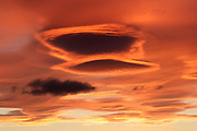 Lenticular clouds, Altocumulus lenticularis with altostratus, at sunrise, with cloud patterns, over Inverness, Inverness-shire, Highland.