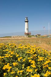 Pigeon Point Lighthouse, major example of  lighthouse architecture, now a Youth Hostel,.San Mateo Coast of California, south of San Francisco.  Photo copyright Lee Foster, 510-549-2202, lee@fostertravel.com, www.fostertravel.com. Photo 482-31016