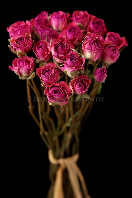 bouquet of dried red roses