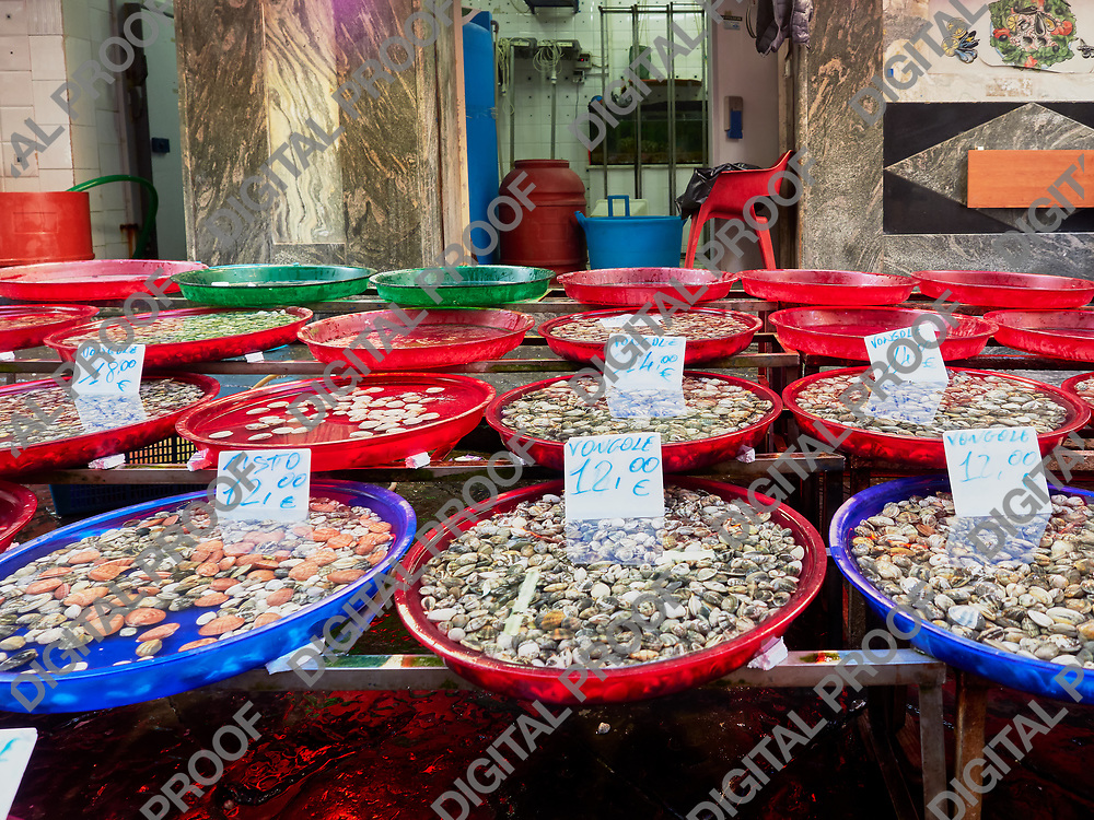 Plastic bowls with delectable fresh shellfish standing on stall in market in Napoli, Italy
