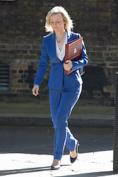 Downing Street, London, May 3rd 2016. Environment Food and Rural Affairs Secretary Elizabeth Truss arrives at 10 Downing Street for the weekly cabinet meeting. ©Paul Davey<br /> FOR LICENCING CONTACT: Paul Davey +44 (0) 7966 016 296 paul@pauldaveycreative.co.uk