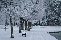 THEMENBILD - Neuschnee in der Parkanlage rund um das Schloss Hellbrunn, aufgenommen am 06. Jänner 2020 in Salzburg, Oesterreich // Fresh snow in the park around Hellbrunn Palace, in Salzburg, Austria on 2020/01/06. EXPA Pictures © 2020, PhotoCredit: EXPA/Stefanie Oberhauser