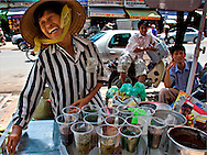 A woman sells herbal drinks from her stand in Saigon's Chinatown. Robert Dodge, a Washington DC photographer and writer, has been working on his Vietnam 40 Years Later project since 2005. The project has taken him throughout Vietnam, including Hanoi, Ho Chi Minh City (Saigon), Nha Trang, Mue Nie, Phan Thiet, the Mekong, Sapa, Ninh Binh and the Perfume Pagoda. His images capture scenes and people from women in conical hats planting rice along the Red River in the north to men and women working in the floating markets on the Mekong River and its tributaries. Robert's project also captures the traditions of ancient Asia in the rural markets, Buddhist Monasteries and the celebrations around Tet, the Lunar New Year. Also to be found are images of the emerging modern Vietnam, such as young people eating and drinking and embracing the fashions and music of the West. His book. Vietnam 40 Years Later, was published March 2014 by Damiani Editore of Italy.