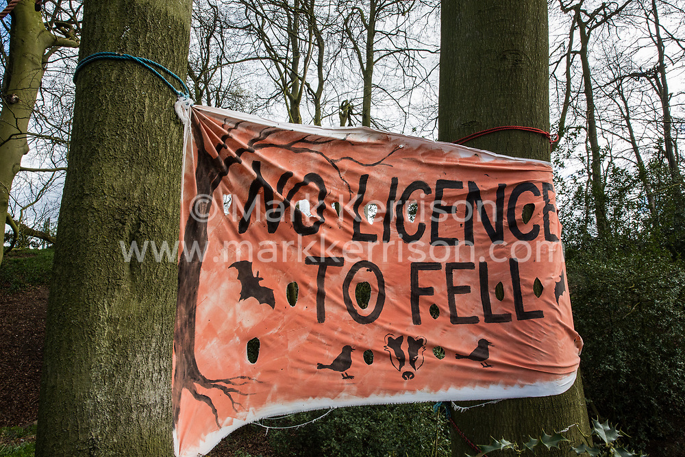 Wendover, UK. 9th April, 2021. A banner hung by environmental activists is pictured during tree felling operations for the HS2 high-speed rail link in Jones Hill Wood. Tree felling work began this week, in spite of the presence of resting places and/or breeding sites for pipistrelle, barbastelle, noctule, brown long-eared and natterer's bats, following the issue by Natural England of a bat licence to HS2's contractors on 30th March.