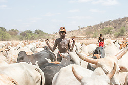 """Passion Pictures crew film Samburu warriors digging wells for their cattle in Sara Conservancy in Northern Kenya for """"Earth in the Age of Man."""" (Photo by Ami Vitale)"""
