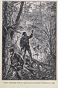 They Ventured forth through Magnificent Forest from the book ' Mistress Branican ' by Jules Verne, illustrated by Leon Benett. The story begins in the United States, where the heroine, Mistress Branican, suffers a mental breakdown after the death by drowning of her young son. On recovering, she learns that her husband, Captain Branican, has been reported lost at sea. Having acquired a fortune, she is able to launch an expedition to search for her husband, who she is convinced is still alive. She leads the expedition herself and trail leads her into the Australian hinterland. Mistress Branican (French: Mistress Branican, 1891) is an adventure novel written by Jules Verne and based on Colonel Peter Egerton Warburton and Ernest Giles accounts of their journeys across the Western Australian deserts, and inspired by the search launched by Lady Franklin when her husband Sir John Franklin was reported lost in the Northwest Passage. Translated by A. Estoclet, Published in New York, Cassell Pub. Co. 1891.