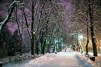 Bialystok, 26.01.2017. Nocny Bialystok pod sniegiem. Po całodobowych obfitych opadach sniegu miasto zostalo przykryte 30 cm warstwa bialego puchu. N/z aleja w Parku Branickich fot Michal Kosc / AGENCJA WSCHOD