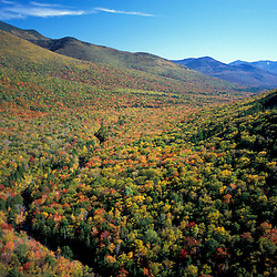 White Mountain N.F., NH. The view south from the site of the old Camp 12 (logging camp).  Franconia Brook.  Scar Ridge in distance. Pemigewasset Wilderness Area.