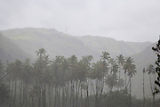 Heavy rainfall, Ua Huka, Marquesas Islands, French Polynesia<br />