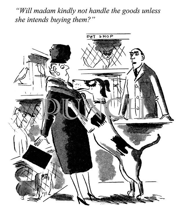 """Dogs Days. """"Will madam kindly not handle the goods unless she intends buying them?"""""""