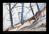 """""""Mammoth Hot Springs, Trees"""" - Acrylic on display board, 24 x 36 inches.  © Tim McGuire 2013   Original is SOLD but there are prints available."""