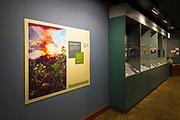 Interpretive displays at the visitor center, Hawaii Volcanoes National Park, Hawaii USA
