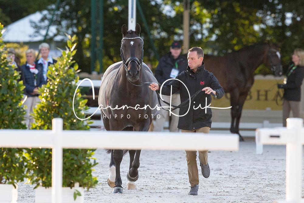 David Marcus, (CAN), Chrevi's Capital - Horse Inspection Dressage - Alltech FEI World Equestrian Games™ 2014 - Normandy, France.<br /> © Hippo Foto Team - Leanjo de Koster<br /> 25/06/14