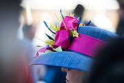 NOVEMBER 3, 2017: BREEDERS' CUP. A lady wearing an elegant hat at Del Mar.