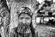Jagua is an important fruit in the life of Embera. It is used as a black dye to paint people's skins. The pigment remains embedded in the skin until the external layer is naturally exfoliated, generally lasting between 10 to 12 days.  Sambu District. Darien Region.
