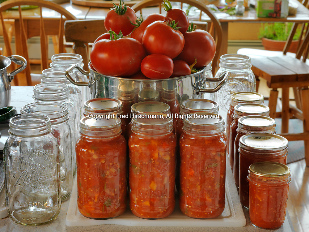 Freshly picked heirloom tomatoes for home canning with jars of garden salsa, Randi and Fred Hirschmann's kitchen, Glacier View, Alaska.