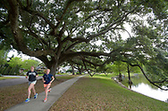 Joggers run under large oak trees in the Delaney Park neighborhood of Orlando, Fla., Friday, April 22, 2016. (Phelan M. Ebenhack via AP)