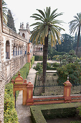 View of Alcazar palace