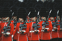 Members of a Guard's regiment parading through central London in summertime in their distinctive crimson jackets and Bear fur hats. Soldiers and officers of the Guard regiments have to uphold the highest and most organised personal administration within the British Army. They are pictured with SA80 rifles attached with ceremonial sight covers and bayonets.