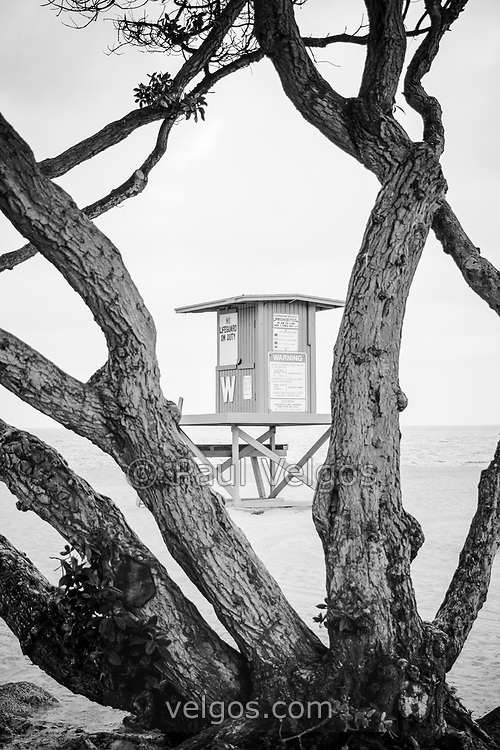 Newport Beach Wedge Lifeguard Tower W through trees black and white photo. The Wedge is a popular spot for surfers on Balboa Peninsula in Orange County Southern California. Photo Copyright ⓒ 2010 Paul Velgos with All Rights Reserved.