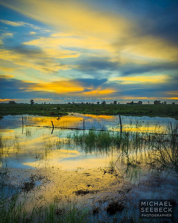 Dawn reflections in local floodwaters on a Darling Downs property, after a severe thunderstorm overnight.<br /> <br /> Code: TAQS0001<br /> <br /> Limited Edition of 25 Prints