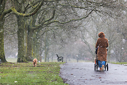 © Licensed to London News Pictures. 11/02/2017. London, UK. A woman walks her dog in Brockwell Park, south London, as snow falls over the capital. Forecasters have predicted the lowest temperatures of the year so far for this weekend. Photo credit: Rob Pinney/LNP