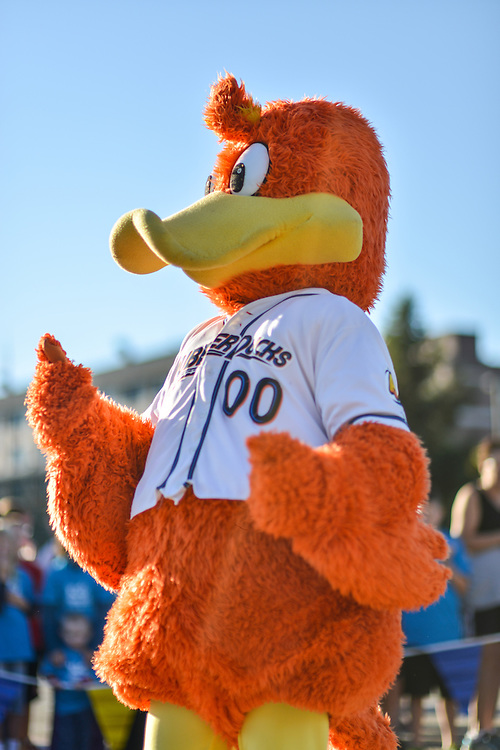 Webster, mascot for the Akron RubberDucks, entertaining at the Kids Fun Run.