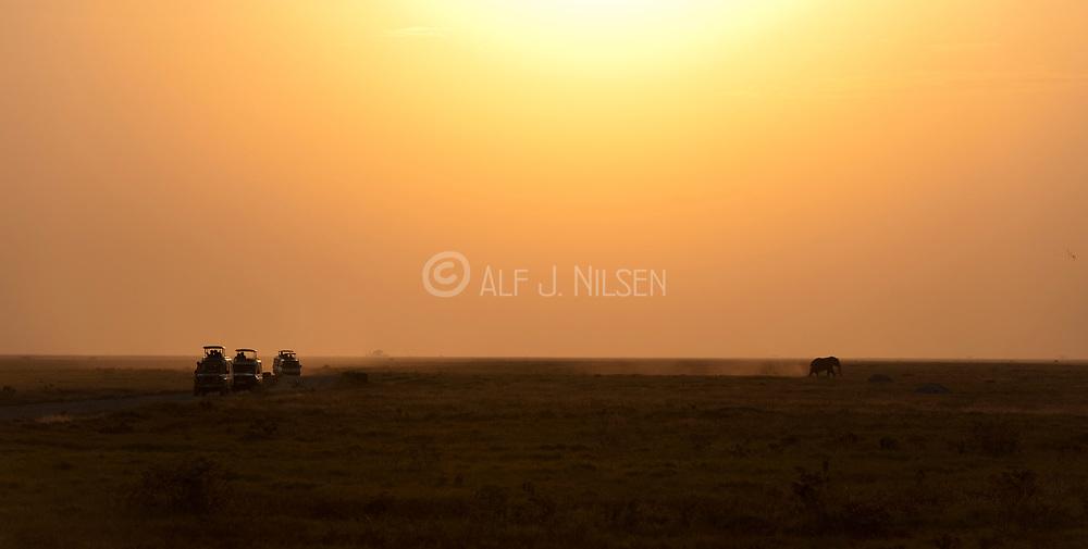 Sunset in Amboseli National Park, Kenya.