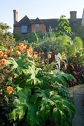 Early morning in the exotic garden at Great Dixter with Tetrapanax papyrifer and Dahlia 'David Howard' in the foreground
