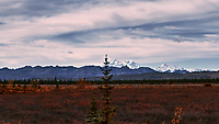 Mount Denali from the Alaska Railroad Train. Image taken with a Nikon D3x camera and 45 mm f/2.8 PC-E lens (ISO 100, 45 mm, f/4.5, 1/1000 sec).