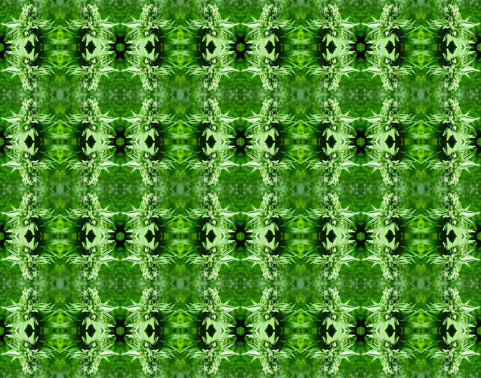 Cannabis Mandala Art