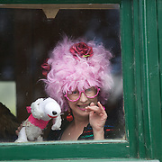 A passanger on the Kingston Flyer vintage steam train at Saturday's relaunch of the historic locomotives at Fairlight near Queenstown, Central Otago, New Zealand, 29th October 2011. Photo Tim Clayton...
