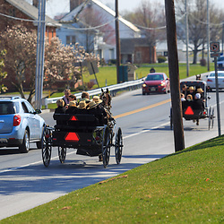Bird-in-Hand, PA, USA - March 24, 2016: An Amish family fill a buggy on a warm spring day in Lancaster County, Pennsylvania.