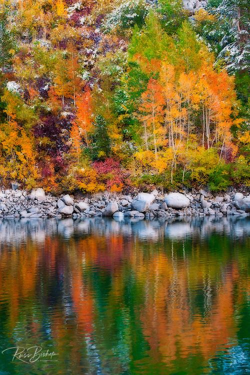 Fall color and fresh snow at Lake Sabrina, Inyo National Forest, Sierra Nevada Mountains, California USA