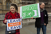 On the day that Prime Minister Theresa Mays Meaningful Brexit vote is taken in the UK Parliament, a Leave supporter and a Green Party voter protest outside the House of Commons, on 15th January 2019, in Westminster, London, England.