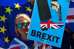 © Licensed to London News Pictures. 14/05/2019. London, UK. An anti-Brexit demonstrator protests outside the Houses of Parliament. Photo credit: Dinendra Haria/LNP
