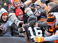 Josh Cribbs jumps into a group of cheering fans after the Browns win over Jacksonville.