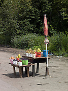 Roadside food stall, Ekaterinburg, Russia
