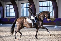 Kronberg, Gestüt Schafhof, KRONBERG _ Int. Festhallen Reitturnier Schafhof Edition 2020,<br /> <br /> MUELLER Lune-Karolin (GER), Seal 4<br /> Preis der Liselott Schindling Stiftung<br /> Piaff-Förderpreis - Einlaufprüfung<br /> U25 Grand Prix<br /> Dressurprüfung Kl.S***<br /> <br /> 19. December 2020<br /> © www.sportfotos-lafrentz.de/Stefan Lafrentz