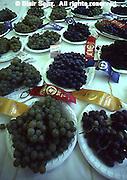 York Fair, York Co., PA, Grapes